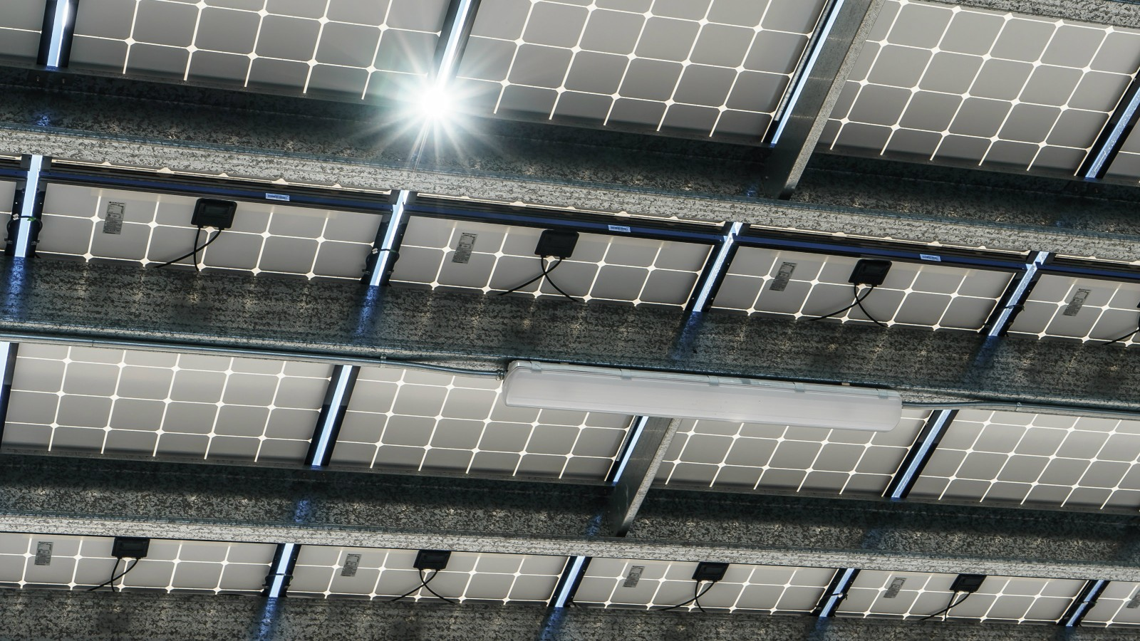 Borrego Solar Doubles Assets Under O&M Management