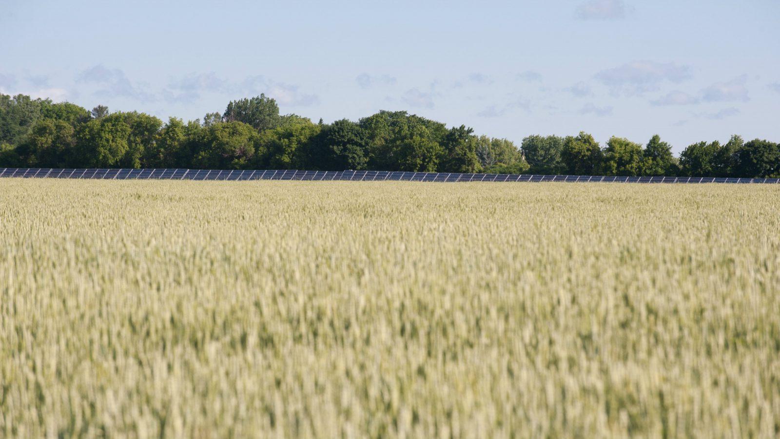 Ithaca College Solar Farm Now Operational
